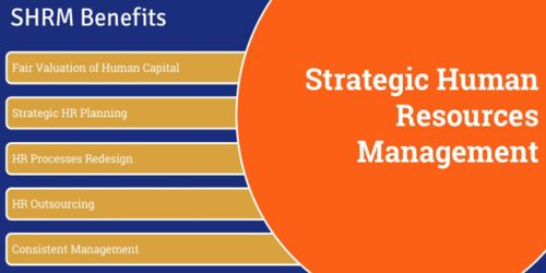 Strategic Human Resource Management Overview - Assignment Point