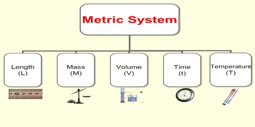 Comparing Metric System Masses, Volumes and Lengths - Assignment Point