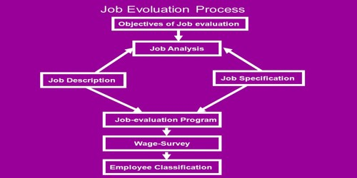 Objectives of Job Evaluation - Assignment Point