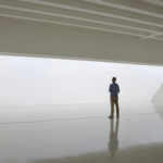 robert irwin