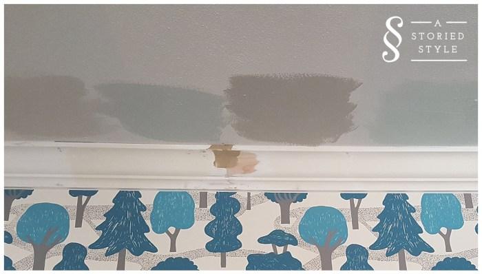 ceiling paint options
