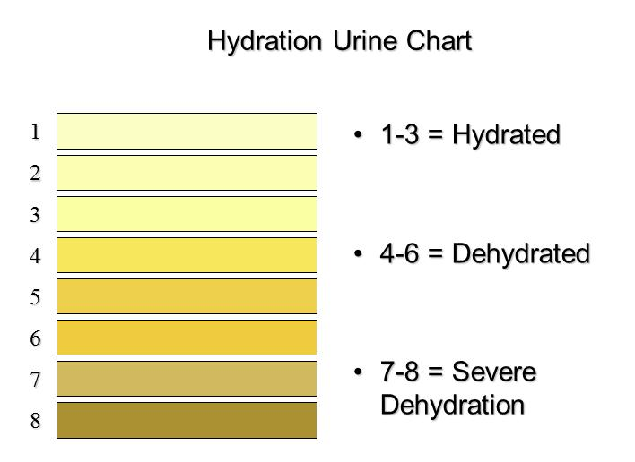 New Urine Dehydration Chart  Heat Stress Hydration And