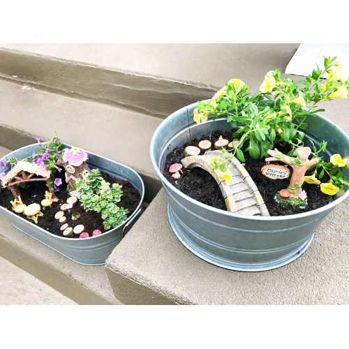 Medium Crop Of Containers For Fairy Gardens