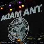 Adam Ant (11)