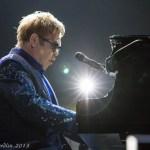 Elton 3 (1 of 1)
