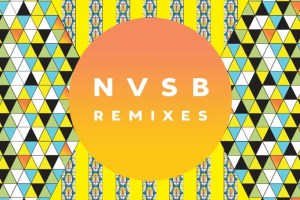 Bassnectar Releases NVSB Remixes + New Single