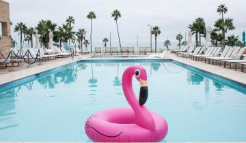 An inflatable flamingo floats in the pool of the Pasea Hotel in Huntington Beach, on Wednesday, October 12, 2016. (Photo by Nick Agro, Orange County Register/SCNG)