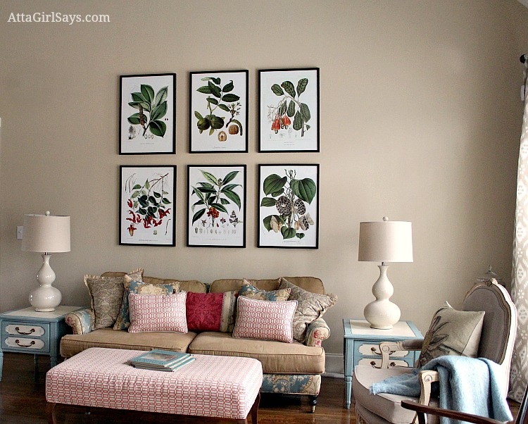 Where to Find Inexpensive Antique Botanical Prints - artwork for living room