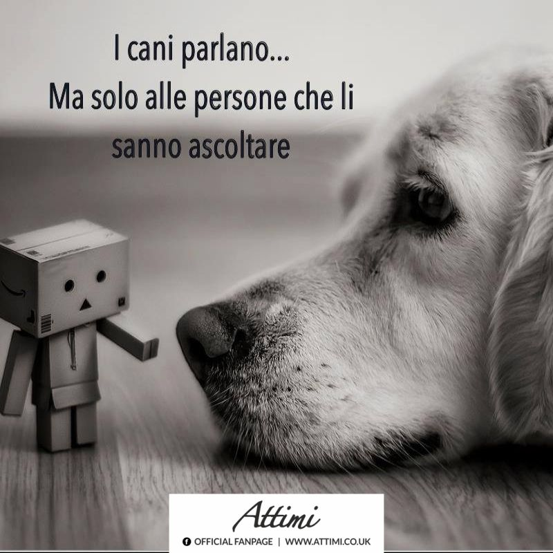 fare bene l amore trova persone italia
