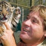 Steve Irwin stung to death