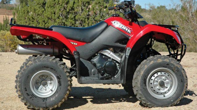 DOWNLOAD 2002-2009 Suzuki Ozark 250 Repair Manual (LT-F250) -