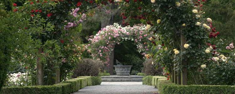 Auckland Botanic Gardens Auckland Celebrant