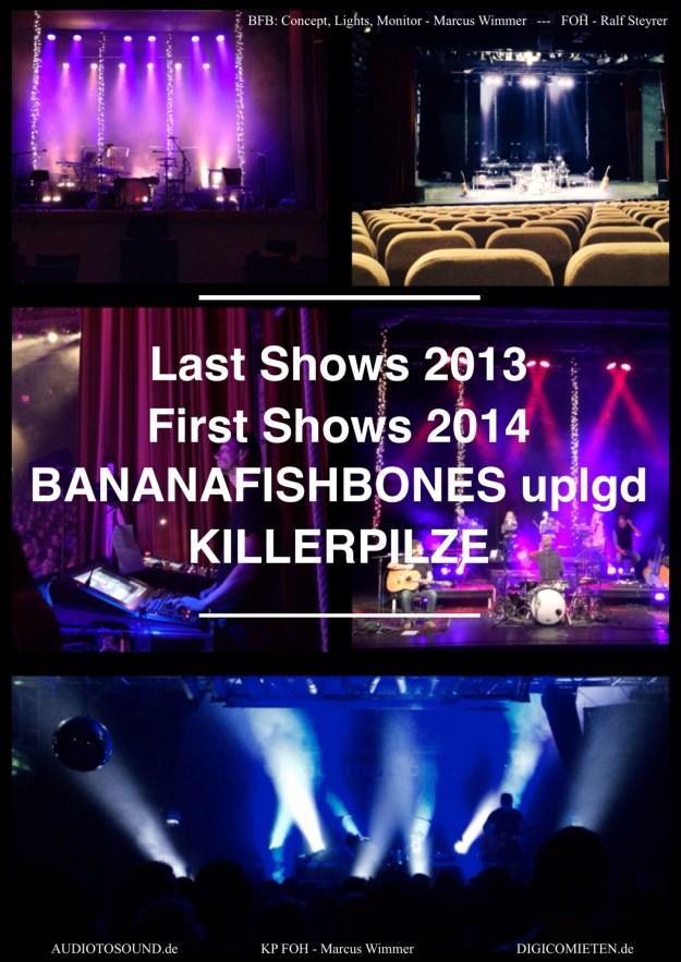Bananafishbones_Killerpilze_Tontechniker_Marcus_Wimmer_digicomieten_SD9_SD11_Waves