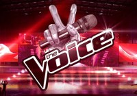 The Voice UK 2014 casting call schedule