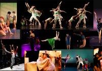 Contradiction Dance Company