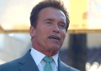 Arnold 478 movie