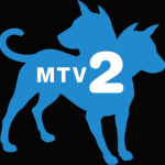 World Star Hip Hop's new MTV2 Show Casting A Kid Reporter in L.A.