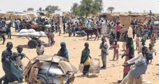 被炸难民营位于东北部博尔诺州接壤喀麦隆边境。(网络配图)