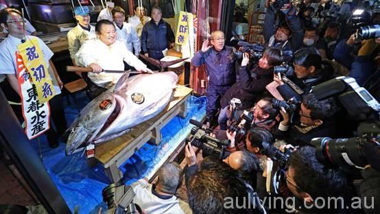 在世界上最大的海鲜市场里购物