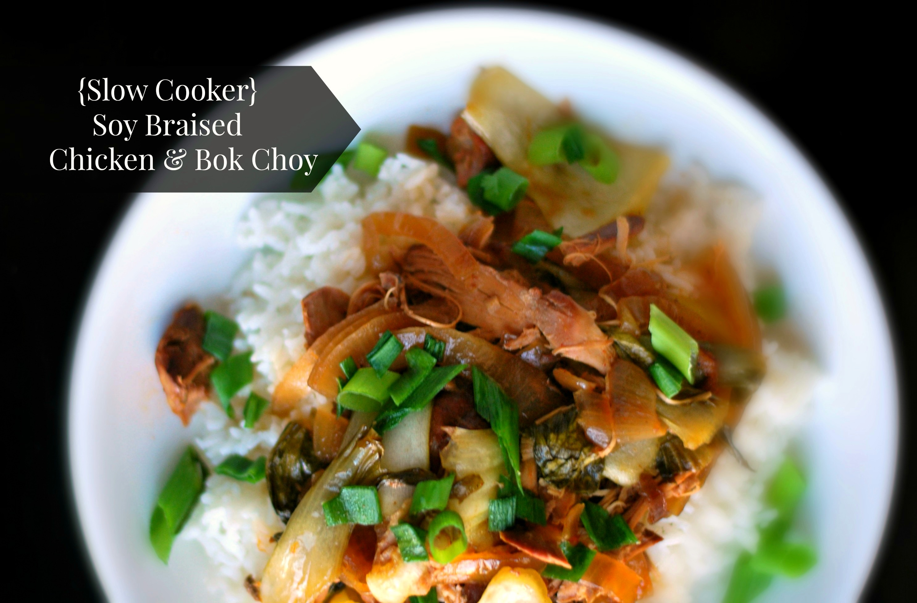 Slow Cooker Soy-Braised Chicken & Bok Choy | Aunt Bee's Recipes