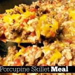Easy Porcupine Skillet