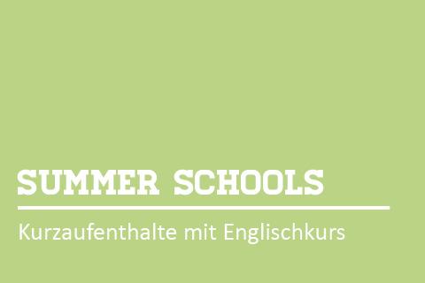 Progr.Summer-Schools