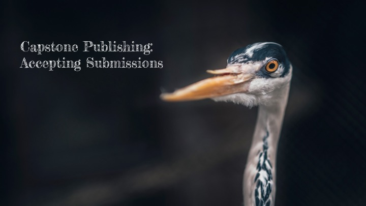 Capstone Publishing Now Accepting Manuscript Submissions - Capstone Publishing