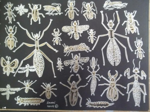 Sanni Rosenburg insects