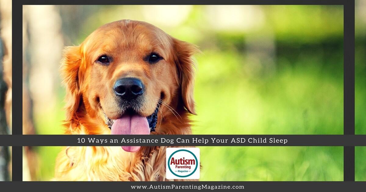 10 Ways an Assistance Dog Can Help Your ASD Child Sleep - Autism