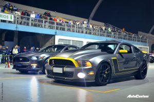 Fotos Noite do Mustang 2016 no Auto Show Collection - Anhembi SP