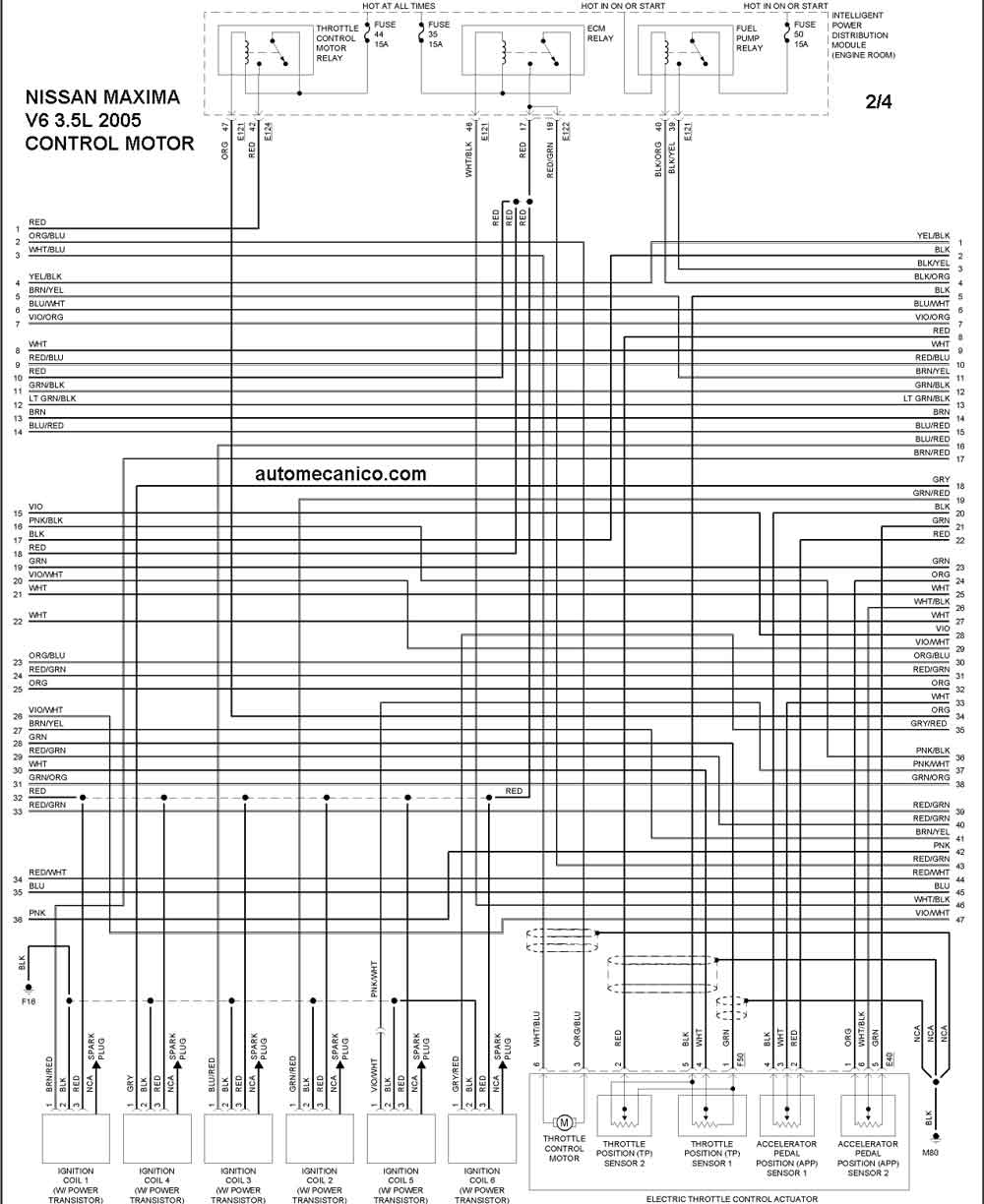 nissan terrano user wiring diagram
