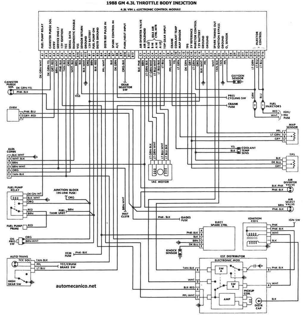ls Diagrama del motor