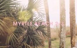 MYRTLE2