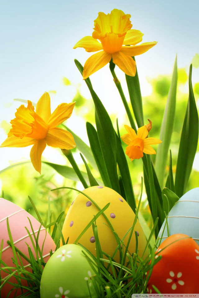 Cute Wallpapers Screensavers 30 Cute Easter Iphone Wallpapers Available Ideas