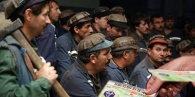 mineri-tichete