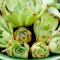 succulent feature