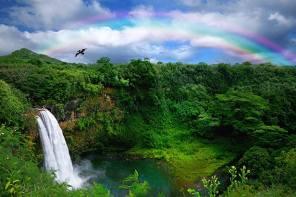 bigstock-Waterfall-in-Kauai-With-Rainboresize
