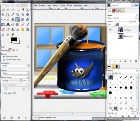 Gimp Paint Cup