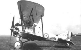 Ggamecock-2
