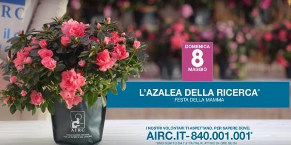 Domenica 8 Maggio in piazza con l'AIRC