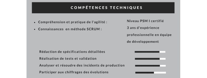 echelle competence word cv