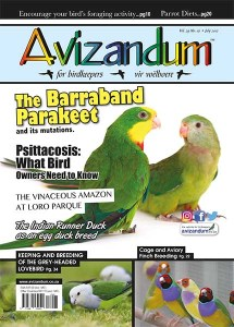 July 17 Cover