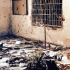 peshwar-school-massacre-islam-boys-boko-haram-pakistan-isis-mens-rights
