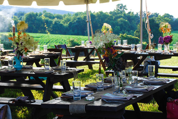 Head Outdoors for a Fun Company Picnic - A V Party Rentals