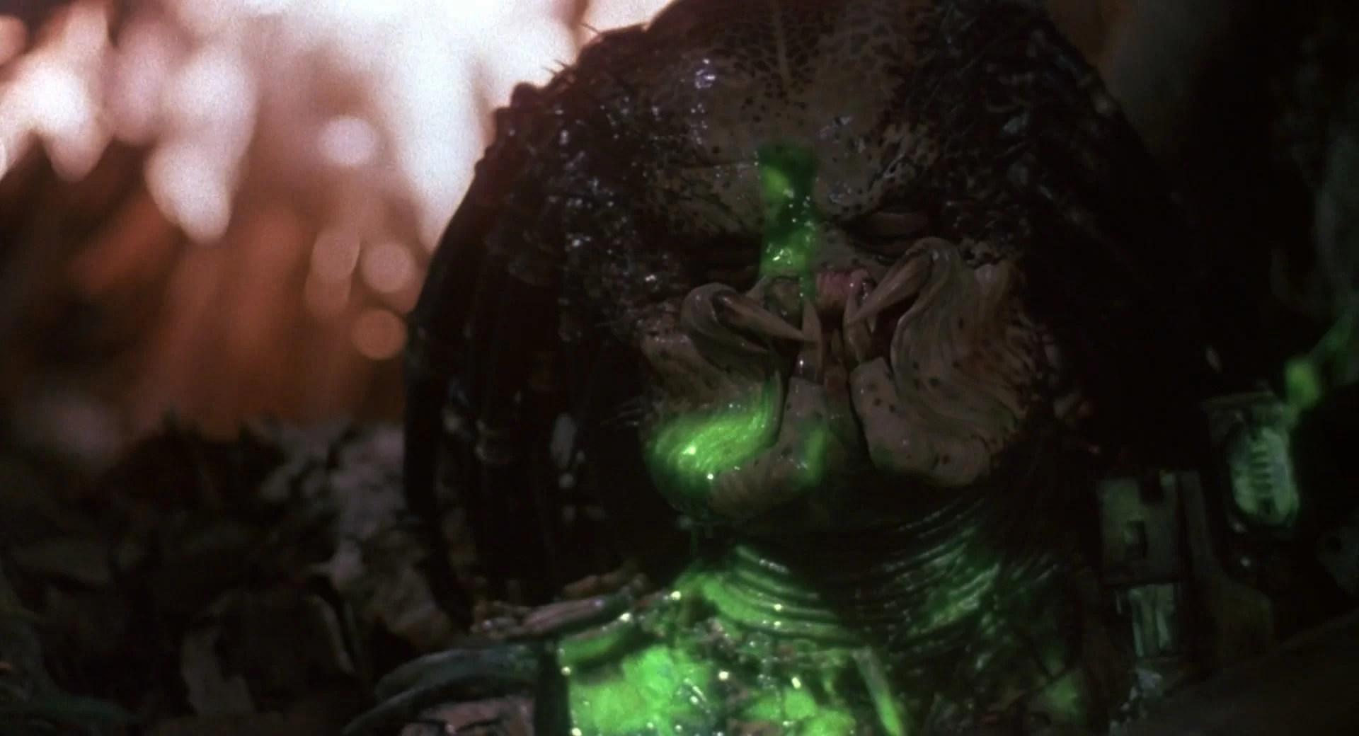 Doom Wallpaper Hd Predator Blu Ray Comparison Avpgalaxy