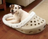 Cool dog bed in shape of a shoe | Interior Design Ideas ...