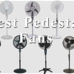 Cool You Down with Best Pedestal Fans if You are Feeling Hot
