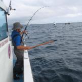 fish-on