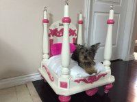 This Dog-Owner Turned An Old Side Table Into A Luxury Bed ...