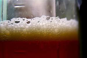 Beer - The Awesome Mitten